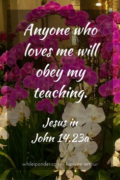 Anyone who loves me will obey my teaching. - Jesus in John 14.23a