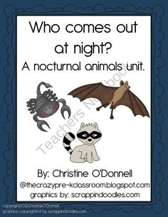 nocturnal animals on pinterest bats animal science and classroom displays. Black Bedroom Furniture Sets. Home Design Ideas
