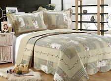 55- All For You 3PC quilt set, beds...