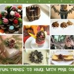 17 Fun Things To Make With Pine Cones