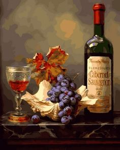 Gabor Toth Still Life Art, Painting Still Life, Glass Bottle, Wine Glass, Wine Photography, Still Life Photography, Painting Still Life, Still Life Art, Cross Stitch Fruit, Fruit Painting, Wine Art, Cross Paintings, Workshop