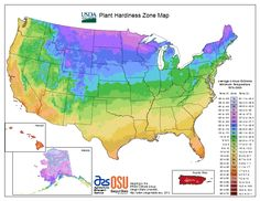 This is an up-to-date cold hardiness map. It's important for gardeners to plant flowers that can survive in the weather conditions of the area. It's always good to know your zone hardiness when purchasing flowers!