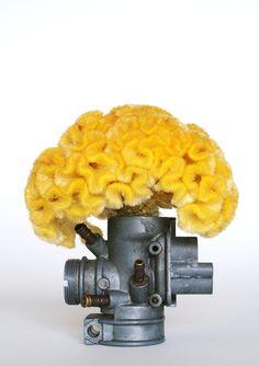 ikebana201509::Celosia argentea+a machine part(鶏頭+機械部品)‐2