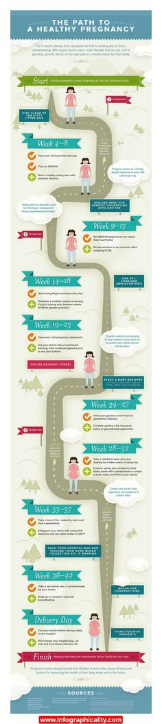 Stages Of Pregnancy Infographic - http://infographicality.com/stages-of-pregnancy-infographic/