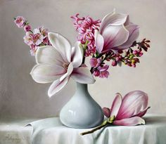Magnolia | Pieter Wagemans