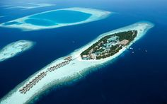 Read our insider's guide to the Maldives, as recommended by Telegraph Travel. Find expert advice and great pictures of top hotels, restaurants, bars and things to do. Best Hotel Deals, Best Hotels, Maldives Travel, Travel Expert, What The World, Top Hotels, Tour Operator, Island Resort, Hotel Spa