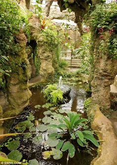 Deep space: John and Lisa Harris discovered an extensive underground garden at their Victorian home Dewstow House