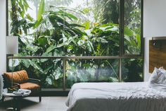 Mashpi Lodge gives guests the opportunity to explore the surrounding cloud forest's immense biodiversity
