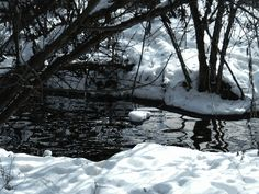Icy stream water winter animated snow cold gif ice stream