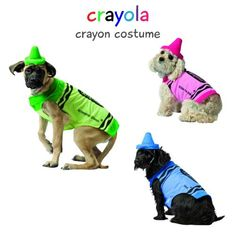 Cute Halloween Costume Ideas for Dogs [Updated:2018] | Vivid -  Colorful Crayon Pet Costume | Halloween Costumes for Dogs We realize how cute your pet looks in her costume. But there are several things to bear in mind before choosing the right outfit for the dog. Nowadays, many individuals decorate their pets on special events such as for example New Year's Eve or holidays. Choosing dog clothes is frequently fun, and seeing your pet in different costumes could make everyone in the family…
