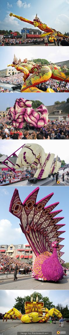 Parade Floats Adorned with Thousands of Dahlia Flowers at Corso Zundert 2014