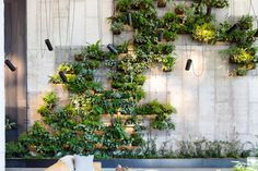 Accentuating the lobby of the eco-conscious 1 Hotel Brooklyn Bridge is a vertical living wall that blends industrial motifs with natural elements. Landscape Elements, Landscape Design, Brooklyn Bridge, Brooklyn Hotels, Vertical Green Wall, Hallway Designs, Wall Installation, Interior Plants, Interior Garden