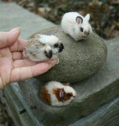 So tiny...So cute!