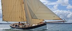 Pilot cutter Agnes under full sail