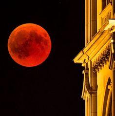 Blood Moon - Longest Lunar Eclipse of Century Moon Photos, Lunar Eclipse, Blood Moon, 21st Century, Amazing, Board, Blog, Lunar Eclipse Live Stream, Blogging