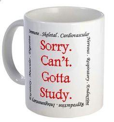 Nursing school student cup mug, got to study! RN college coffee funny gift idea Nursing School Memes, College Nursing, Nursing Major, Nurse Problems, Student Problems, Learning To Say No, Nursing Students, Medical Students, Med Student