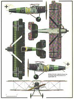 Pfalz DXII 5view
