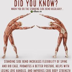 Nowadays, yoga classes have actually ended up being a necessity than ever. The practice is popping up in fitness centers, schools, and even some shops, not to discuss real yoga studios! Yoga Positionen, Yoga Moves, Stretching Exercises, Yoga Flow, Hot Yoga, Scoliosis Exercises, Daily Stretches, Morning Stretches, Morning Yoga