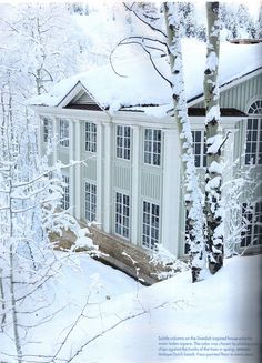 Domiciles. Swedish inspired Aspen home. Architect: Allan Greenberg.