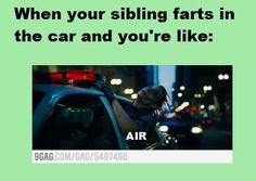 AIR (fart,sibling,troubles,funny,car,air)