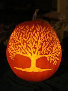 Oak Tree by Joseph S. of Kennett Square, PA