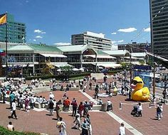 baltimore inner harbor - Google Search