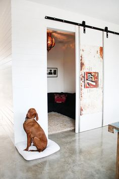 Sliding doors with an industrial edge. I think the dog likes it. =)