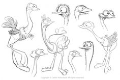 cerdric hohnstadt Find more at https://www.facebook.com/CharacterDesignReferences if you're looking for: #art #character #design #model #sheet #illustration #best #concept #animation #drawing #archive #library #reference #anatomy #traditional #draw #development #artist #how #to #tutorial #birds #bird