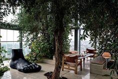 Oliveiras e carvalhos no alto - Casa Vogue | Interiores