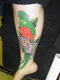 quetzal tattoo 6