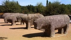 IBERIA - The Bulls of Guisando (Avila province, Spain) - Celtic megalithic sculptures (verracos), century BC Disney World Rides, Disney World Resorts, Celtic Culture, Spanish Art, World History, Ancient History, Lion Sculpture, Elephant, Iberian Peninsula