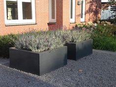 Garden products for professionals Dream Garden, Home And Garden, Dutch Gardens, Flower Pot Design, Terra Cotta, Garden Design Plans, Outdoor Flowers, Buxus, Garden Structures