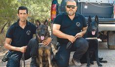 Σκύλοι – ανιχνευτές δηλητηριασμένων δολωμάτων στην Κρήτη