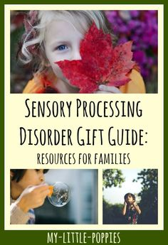 Sensory Processing Disorder Gift Guide: Resources for Families | My Little Poppies  All of the top educational tools, activities, resources, books, and toys to help children learn to navigate and manage their sensory processing disorder. Also includes resources to help with the education of children regarding these unique challenges.