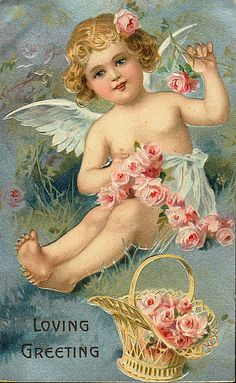 angel  K
