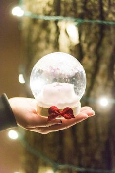He used a DIY snowglobe as a ring box! Such a creative way to propose around the holidays, and a perfect ring display. <3