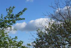 paysage de ciel