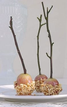 """grapes coated with """"Isomalt"""", dipped into chopped nuts and stabbed with a twig. Works as well with bigger guys like apples, etc."""