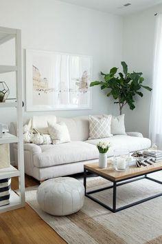 Sofa White Living Room Set Up Ideas Plant Shelves