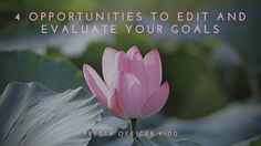 4 Opportunities to Edit and Evaluate Your Goals | prettyofficerkidd
