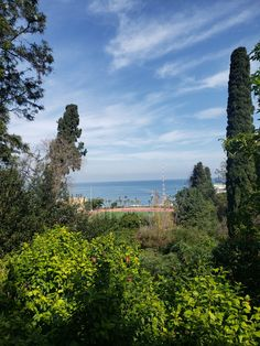 Beirut, University, Country Roads, Mountains, American, Nature, Travel, Naturaleza, Viajes