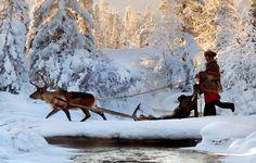Sápmi Winter Wonderland
