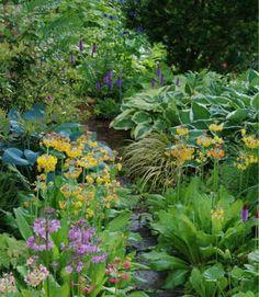 Pflanzen für schattige Plätze