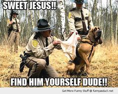 Funny Bloodhound SAR Dog picture. This pic made my day!