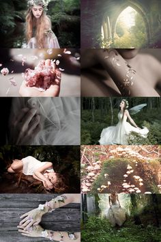 faerie aesthetic (requested) more here // request here