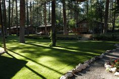 1. Forest Home Cabins, Ruidoso (and others in New Mexico)