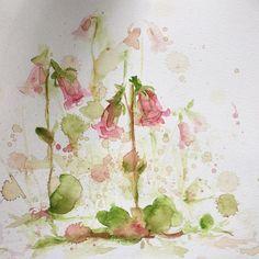 """""""Linnea - SmålandsFlora #chosefri #watercolor #flora #småland #behance #flowers"""""""