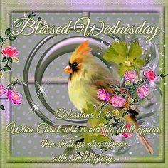 Blessed Wednesdy wednesday hump day wednesday quotes happy wednesday wednesday…