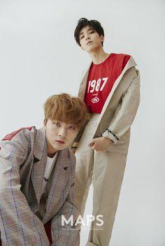 seungkwan and wonwoo