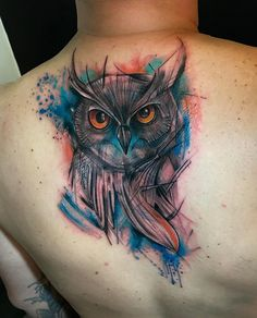 Owl cover up - #funny #gifs #viralvids #funnypics #cute more at: http://www.theviralmonster.com